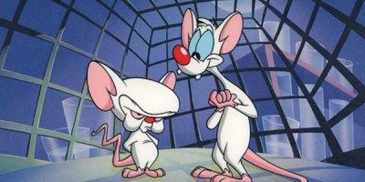 Pinky & The Brain tv comedy series American Comedy Series